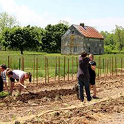 Τα δικαιολογητικά για την κατασκευή αποθήκης μέσα σε αγροτεμάχιο