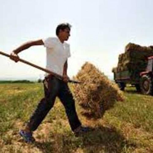 Μείωση ορίου ηλικίας για τη συνταξιοδότηση των αγροτών εισηγούνται 31 βουλευτές της ΝΔ