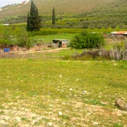 Το ακατάσχετο των αγροτικών επιδοτήσεων ζήτησε ο Λ.Τσαβδαρίδης