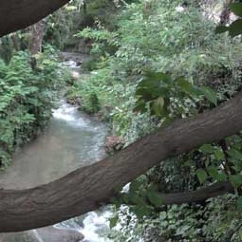 Εστία κινδύνου η συνοικία της Μπαρμπούτας, στις όχθες του Τριποτάμου