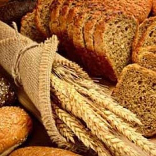 «Η Διατροφή στην τρίτη ηλικία και η σημασία του σωστού συνδυασμού τροφών στη ρύθμιση της πείνας και του κορεσμού»