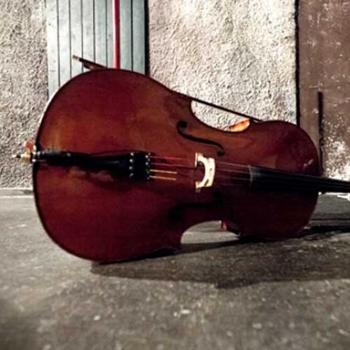 Δυο υποτροφίες για βιολοντσέλο από την ΚΕΠΑ του Δήμου Βέροιας