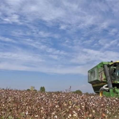 ΠΑΣΟΚ: Οι αγρότες πρώτα θύματα της πολιτικής της κυβέρνησης