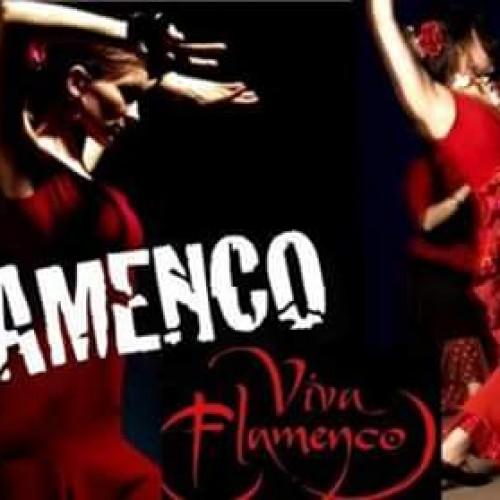Μαθήματα Flamenco στον Π.Γ.Σ «Ο ΠΡΟΜΗΘΕΑΣ»