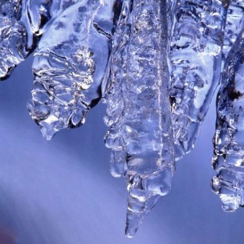 Αναγγελία ζημιάς από παγετό στο αγρόκτημα του Δήμου Βέροιας