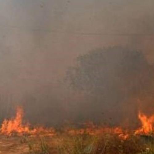Οδηγίες προς αγρότες, για την αποφυγή πυρκαγιών
