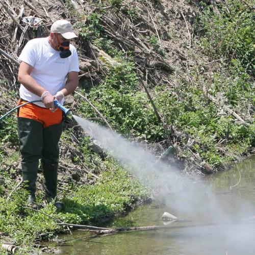 Ψήφισμα του Δημοτικού Συμβουλίου Αλεξάνδρειας ενάντια στην καθυστέρηση διενέργειας των ψεκασμών για την καταπολέμηση των κουνουπιών