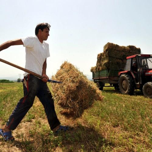 Νάρκη στις αγροτικές εκμεταλλεύσεις η αύξηση του φόρου στο 26%