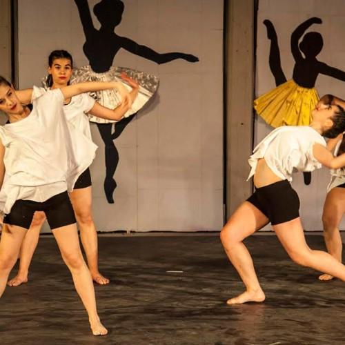 Με επιτυχία η Βραδιά Χορού της Ευξείνου Λέσχης Ποντίων Νάουσας