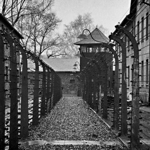 """""""Η Μουσική στην καθημερινότητα των ναζιστικών στρατοπέδων συγκέντρωσης 1933-1945"""" της Πόπης  Φιρτινίδου"""