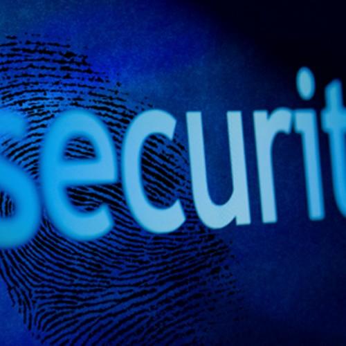 Μαϊμού security στην Πέλλα - Σχηματίσθηκε δικογραφία