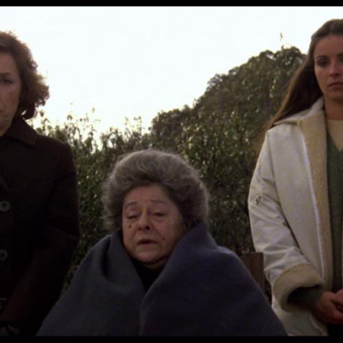 """Σήμερα Πεμπτη 6/8, στο """"Θερινό Σινεμά"""", στο πάρκο των Αγ. Αναργύρων στη Βέροια: """"Η μαμά κλείνει τα 100"""""""