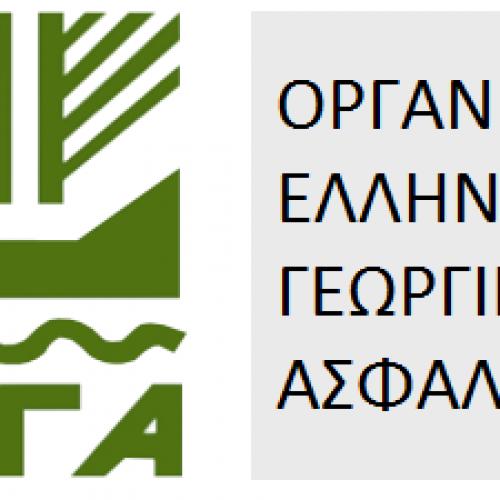 Χορηγήθηκε προθεσμία υποβολής δηλώσεων ζημιάς στον ΕΛΓΑ, για τις δενδρώδεις καλλιέργειες και τα αμπέλια