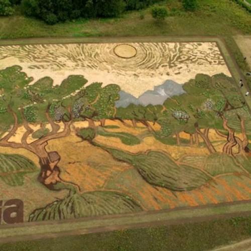 Μετέτρεψε το αγρόκτημά του σε πίνακα του Βαν Γκογκ!