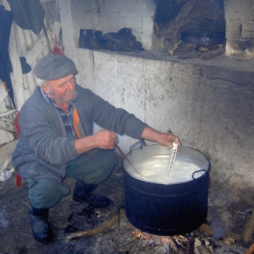 """""""Το φρέσκο γάλα των… εξήντα ημερών, κτηνοτρόφοι, αγρότες και… ισοδύναμα!"""" του Δημήτρη Τσιμούρα"""