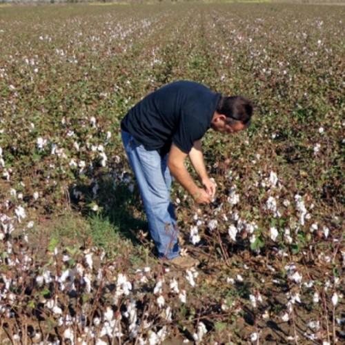 Δήμος Βέροιας: Καλούνται οι αγρότες να δηλώσουν τις ζημιές στις καλλιέργειες