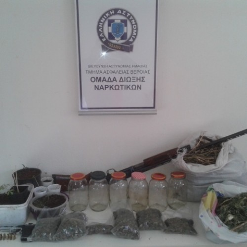 Συνελήφθη  στην Ημαθία για καλλιέργεια κάνναβης και παράνομη οπλοκατοχή