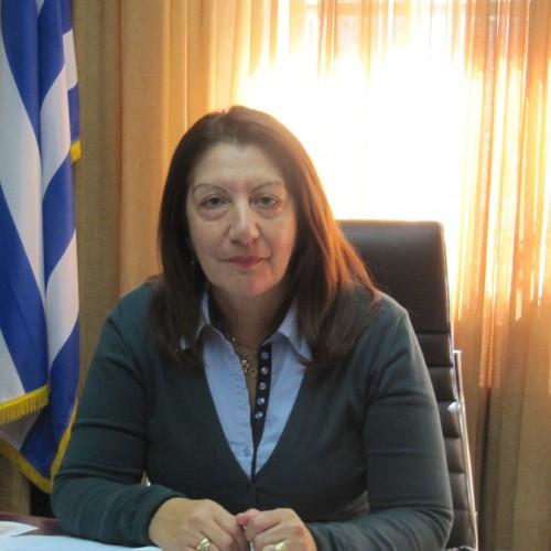 Μέχρι τα Χριστούγεννα θα λειτουργήσει το νέο σχολικό συγκρότημα της Βέροιας στα Γιοτζαλίκια, σύμφωνα με τη Διευθύντρια Β/θμιας Εκπ/σης, κ. Μαυρίδου