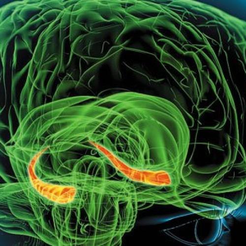 Εννιά στρατηγικές για τη βελτίωση της μνήμης