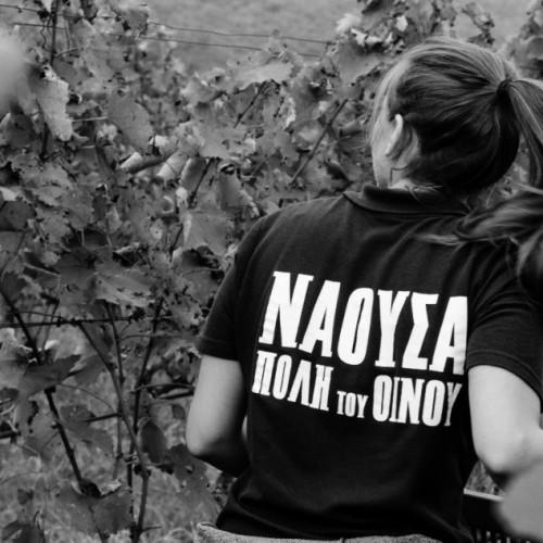 ΝΑΟΥΣΑ, Η ΠΟΛΗ ΤΟΥ ΟΙΝΟΥ 2015 - ΠΡΟΓΡΑΜΜΑ ΕΚΔΗΛΩΣΕΩΝ (NAOUSSA, THE WINE CITY 2015)