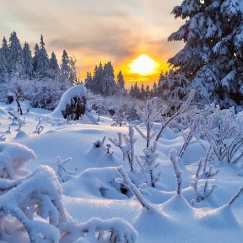 Η faretra εύχεται σε όλους Καλή Χρονιά