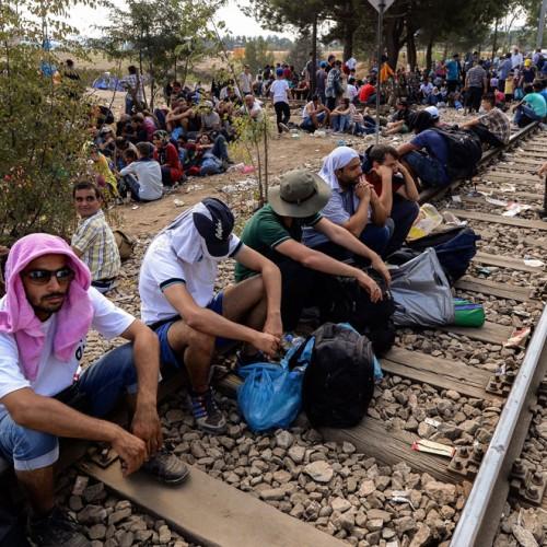 """Δημοτική Κοινότητα Βέροιας - Επιμελητήριο Ημαθίας: """"Οι εξελίξεις στο προσφυγικό..."""", Τετάρτη 16/12/'15"""