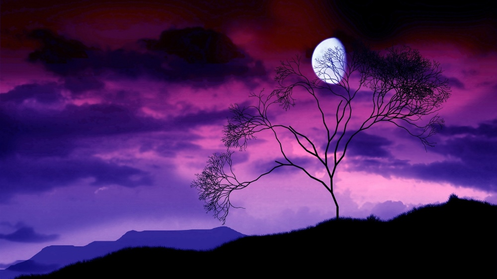 moon_night_sky_lilac_tree_bush_branches_outlines_48668_2048x1152