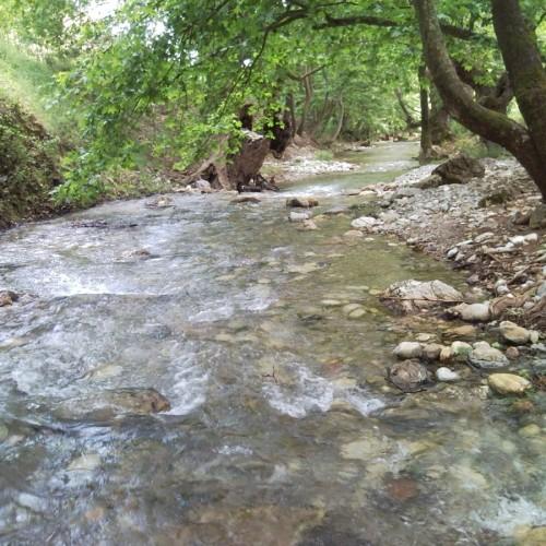 Υδροηλεκτρική μονάδα στον Τριπόταμο στη Βέροια - Διατύπωση γνώμης
