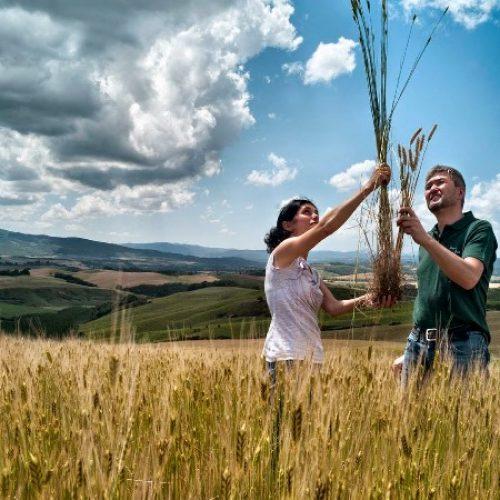"""Προδημοσίευση προκήρυξης του Υπομέτρου 6.1 """"Εκκίνηση Επιχείρησης από Νέους Γεωργούς"""""""