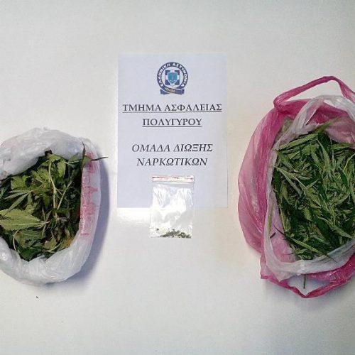 Εντοπίστηκε φυτεία κάνναβης στη Χαλκιδική - Στις έρευνες συνέδραμε ελικόπτερο της Ελληνικής Αστυνομίας