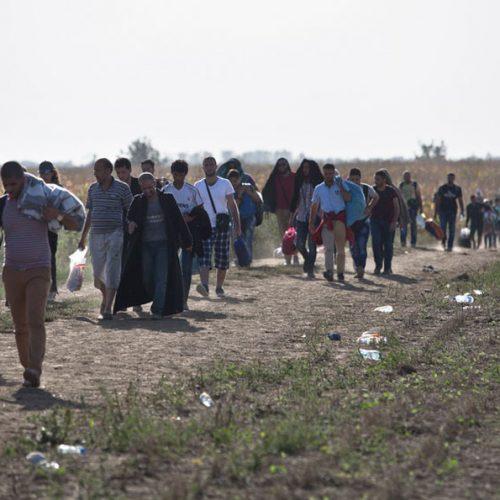Αλλαγή πολιτικής στο μεταναστευτικό και  διαμόρφωση    εναλλακτικού σχεδίου ζητούν 56 Βουλευτές της ΝΔ