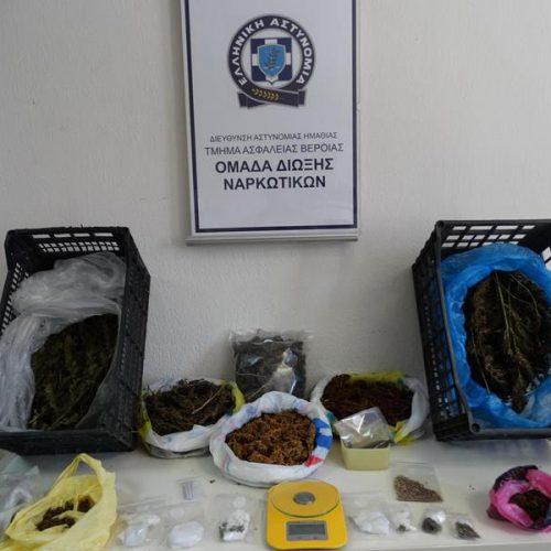 Συνελήφθη ζευγάρι στην Ημαθία για καλλιέργεια και διακίνηση  κάνναβης