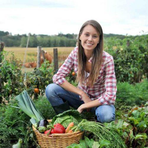 Η Διεύθυνση Αγροτικής Οικονομίας για υποψήφιους  Νέους  Γεωργούς
