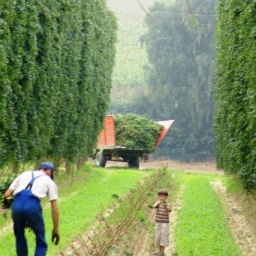 """Η επόμενη μέρα για το Αγροτικό, μέσα από τη """"Συμφωνία Αλήθειας"""" του Κυριάκου Μητσοτάκη"""
