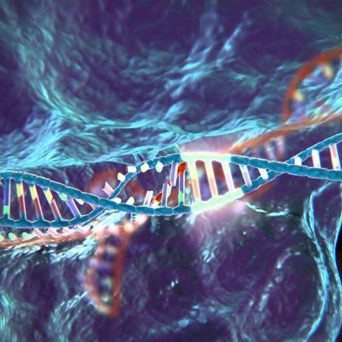 """""""Η Γενετική Μηχανική πρόκειται να αλλάξει τα πάντα για πάντα"""" γράφει η Ιωάννα Γαρεφαλάκη"""