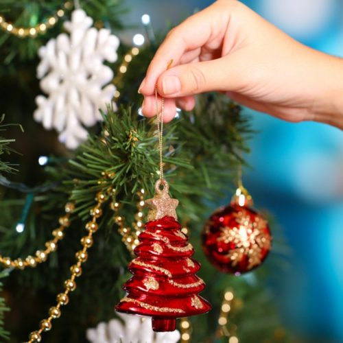 """ΣΟΦΨΥ Ημαθίας: """"Ελάτε να στολίσουμε τη Στέγη Δημιουργίας μας"""" Κυριακή 4 Δεκεμβρίου"""