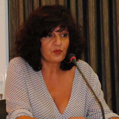 Δήλωση της Βουλευτή του ΣΥΡΙΖΑ Φρόσως Καρασαρλίδου για τα σχόλια σχετικά με την περιουσιακή της κατάσταση