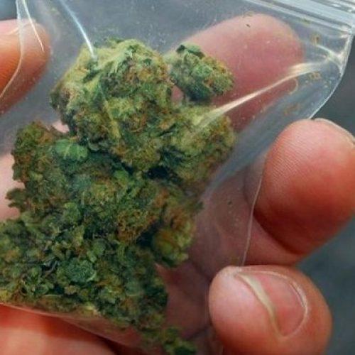 Συλλήψεις για ναρκωτικά  σε Πέλλα και Ημαθία
