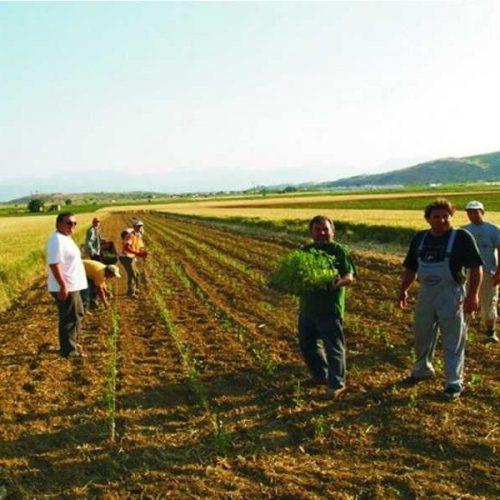 """""""Το  Φορολογικό  και  οι  Ασφαλιστικές  Εισφορές  των  Αγροτών"""" γράφει ο Γιώργος Ουρσουζίδης"""