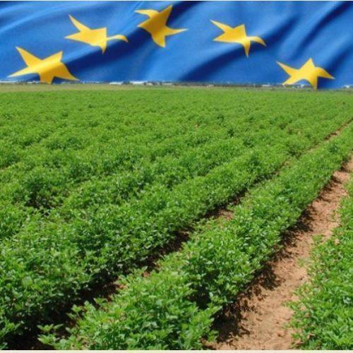 """Ημερίδα: """"Γεωργία, περιφερειακή ανάπτυξη και κοινή αγροτική πολιτική"""", Τρίκαλα Ημαθίας"""