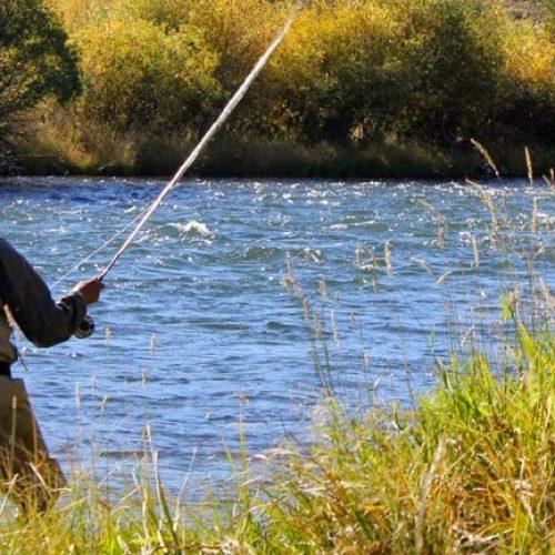 Απαγόρευση αλιείας σε λίμνες και ποτάμια της Π. Κ. Μακεδονίας