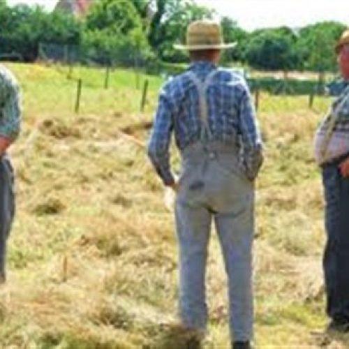 """Φρόσω Καρασαρλίδου: """"Όσοι συνταξιούχοι του ΟΓΑ ασκούν αγροτικά επαγγέλματα θα λαμβάνουν το σύνολο της σύνταξής τους"""""""