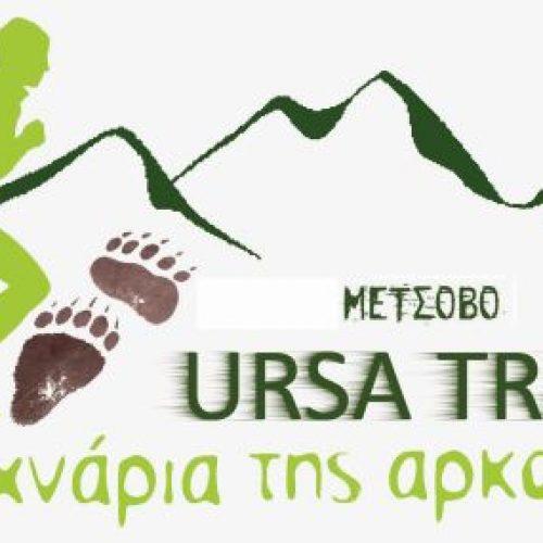 Αποτελέσματα του Συλλόγου Δρομέων Βέροιας από το Μέτσοβο - Στα χνάρια της αρκούδας