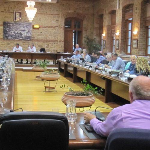 Eιδήσεις και στιγμιότυπα από το Δημοτικό Συμβούλιο Βέροιας