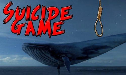 """Ενημέρωση  της Αστυνομίας  για το επικίνδυνο  διαδικτυακό φαινόμενο  """"Blue Whale Challenge"""""""
