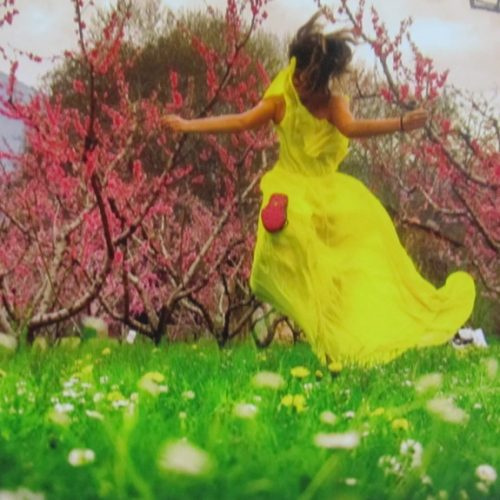 """Εντυπωσιακή η έκθεση φωτογραφίας για τις """"ανθισμένες ροδακινιές"""" στο Δημαρχείο της Βέροιας"""