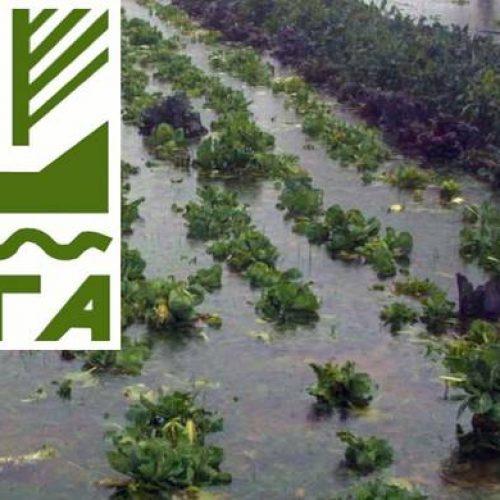 Δήμος Βέροιας: Παρελήφθησαν από τον ΕΛΓΑ  οι εκτιμήσεις των ζημιών