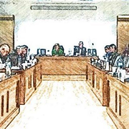 """Δημοτικό Συμβούλιο  Δήμου Δέλτα:  """"Καμία «απόλυση» και αίτημα για 135 μονίμους στο Δήμο"""""""