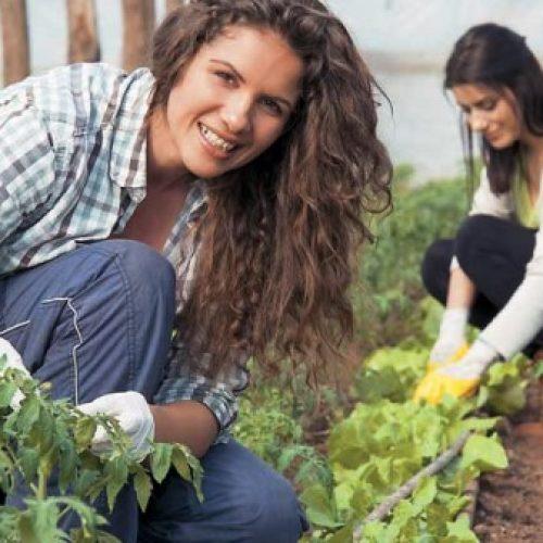 Απ. Βεσυρόπουλος: Να ενταχθούν και οι επιλαχόντες στους δικαιούχους του προγράμματος για τους νέους αγρότες»