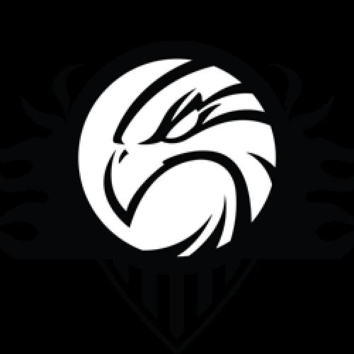 Μπάσκετ: Το πλήρες πρόγραμμα των Αετών Βέροιας στο Κύπελλο ΕΚΑΣΚΕΜ